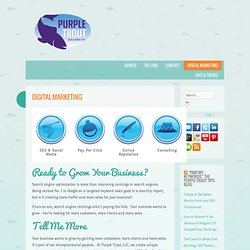 SEO Cincinnati, Search Engine Optimization Cincinnati, SEO, Multilingual Search Engine Optimization - Purple Trout, LLC