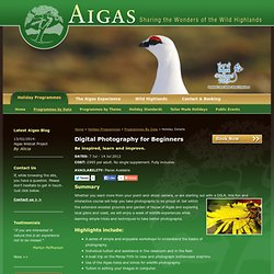 Aigas - holiday by date details