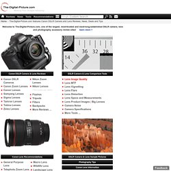 Canon Digital SLR Camera and Lens Reviews at The-Digital-Picture.com