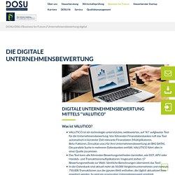 Unternehmensbewertung digital - DOSU AG Wirtschaftsprüfung