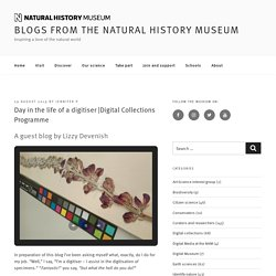 Digital Collections Programme – Blogs from the Natural History Museum