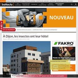 À Dijon, les insectes ont leur hôtel