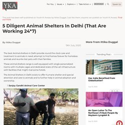 5 Diligent Animal Shelters in Delhi (that are working 24*7)