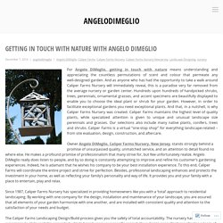 Getting In Touch With Nature With Angelo DiMeglio – angelodimeglio