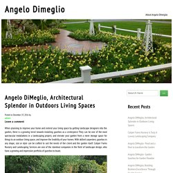 Angelo DiMeglio, Architectural Splendor in Outdoors Living Spaces