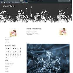 dinararabbit - Все о снежинках.