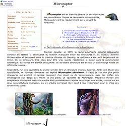 Le dinosaure Microraptor - DinoNews
