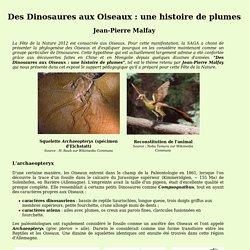 Des Dinosaures aux Oiseaux : une histoire de plumes, Fête de la Nature 2012