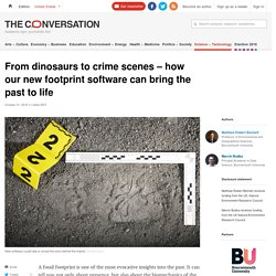 From dinosaurs to crime scenes – how our new footprint software can bring the past to life