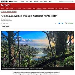 'Dinosaurs walked through Antarctic rainforests'