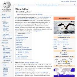Diomedeidae