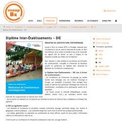Diplôme Inter-Établissements - DIE