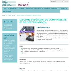 Diplôme Supérieur de Comptabilité et de Gestion (DSCG)