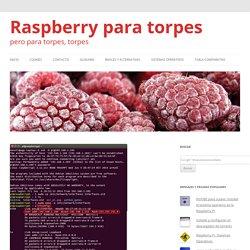 Poner la dirección IP fija en Raspbian