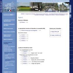Direction des services départementaux de l'éducation nationale du Loiret:Cycle 3