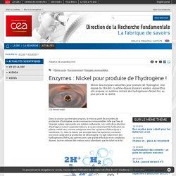 Le fil Science & Techno - Enzymes : Nickel pour produire de l'hydrogène !