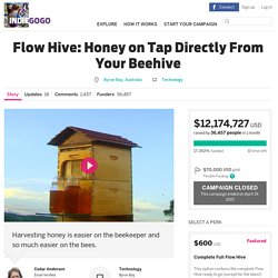 Flow Hive Honey on Tap Directly From Your Beehive