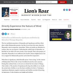 Directly Experience the Nature of Mind - Lion's Roar