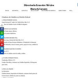 Criadores de caballos y Venta de caballos en Distrito Federal - DirectorioEcuestre MéxicoHorse& Luxury