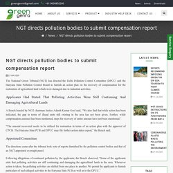 NGT directs pollution bodies to submit compensation report