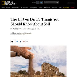 The Dirt on Dirt: 5 Things You Should Know About Soil