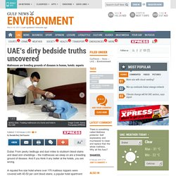 UAE's dirty bedside truths uncovered