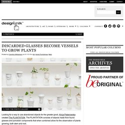 Discarded Glasses Become Vessels to Grow Plants