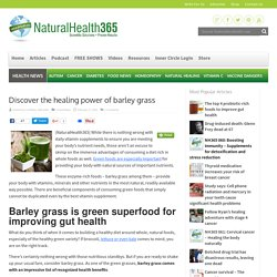 Discover the healing power of barley grass