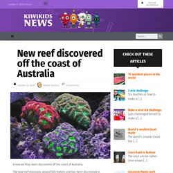 New reef discovered off the coast of Australia – Kiwi Kids News