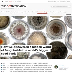 How we discovered a hidden world of fungi inside the world's biggest seed bank