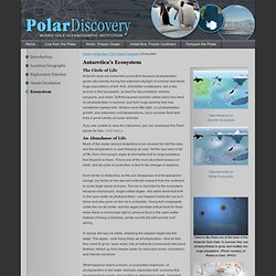 Polar Discovery