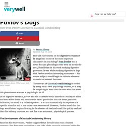 Pavlov's Dogs: The Discovery of Classical Conditioning