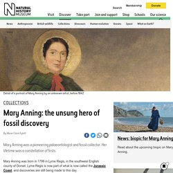 Mary Anning: the unsung hero of fossil discovery