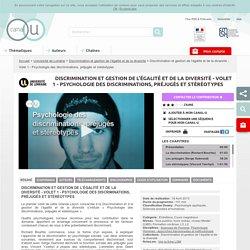 Discrimination et gestion de l'égalité et de la diversité - Volet 1 - Psychologie des discriminations, préjugés et stéréotypes - Université de Lorraine