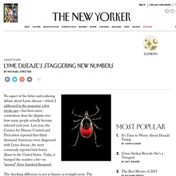Lyme Disease's Staggering New Numbers