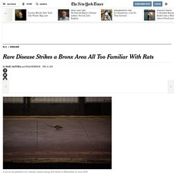 Log In - New York Times