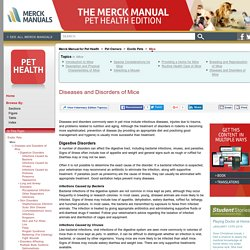 Diseases and Disorders of Mice: Mice: The Merck Manual for Pet Health