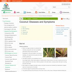 VIKASPEDIA - Coconut: Diseases and Symptoms.