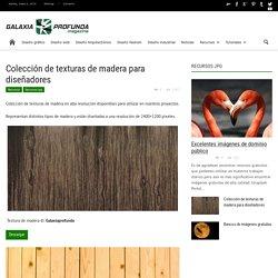 Colección de texturas de madera para diseñadores