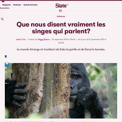 Que nous disent vraiment les singes qui parlent?
