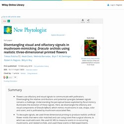 Disentangling visual and olfactory signals in mushroom-mimicking Dracula orchids using realistic three-dimensional printed flowers - Policha - 2016 - New Phytologist