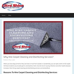 Why Hire Carpet Cleaning and Disinfecting Services?