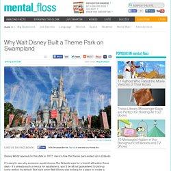 Why Walt Disney Built a Theme Park on Swampland