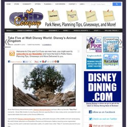 Take Five at Walt Disney World: Disney's Animal Kingdom