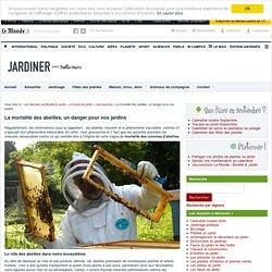 Disparition des abeilles au jardin : danger sur nos plantes !
