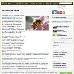 Disparition des abeilles : effets sur l'agriculture et la biodiversité