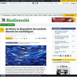 LE MONDE BIODIVERSITE 09/12/14 Au Pérou, la disparition des anchois déroute les scientifiques