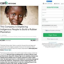 texte de la pétition: This Company is Displacing Indigenous People to Build a Rubber Plantation