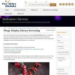 Phage Display Library Screening