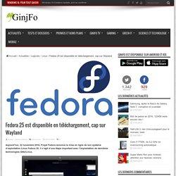 www.ginjfo